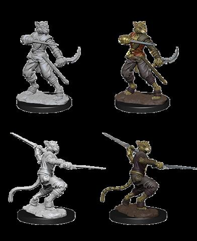 Nolzurs Marvelous Miniatures - Male Tabaxi Rogue