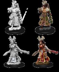 Nolzur's Marvelous Unpainted Minis - Female Human Druid