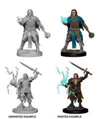Pathfinder Battles Unpainted Minis - Human Male Cleric