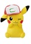 Pokemon - Pikachu wearing Hat 12
