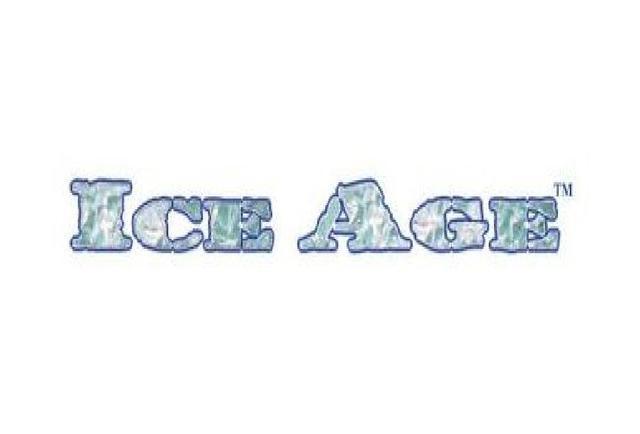 Jester/'s Cap ~ Ice Age Magic MTG Moderately Played