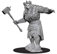 Nolzur's Marvelous Unpainted Miniatures - Fire Giant (73579)