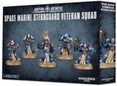 Adeptus Astartes Space Marine Sternguard Veteran Squad 48-19