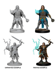 72600 Pathfinder Deep Cuts Unpainted Miniatures: Human Male Cleric