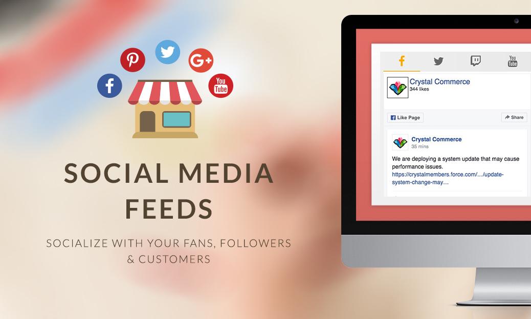 Social Media Feeds Widget