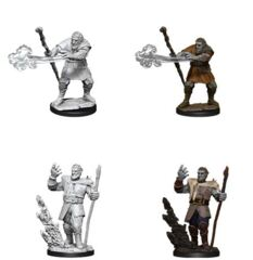 D&D Nolzur's Marvelous Miniatures – Male Firbolg Druid