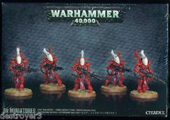 Wraithguard - Craftworlds