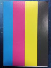 Test Print Card - Common