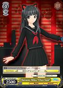 PD/S29-E013a C Hatsune Miku