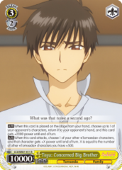 CCS/WX01-011 R  Toya: Concerned Big Brother