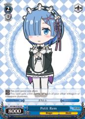 RZ/S46-E105 PR  Petit Rem