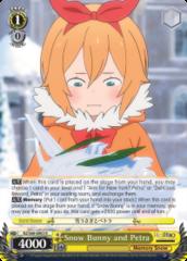 RZ/S68-E003R Snow Bunny and Petra