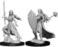 W9 Nolzur's Marvelous Unpainted Miniatures - Female Elf Paladin