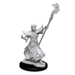 Pathfinder Deep Cuts Unpainted Miniatures: W11 Male Human Sorcerer