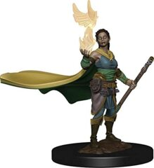 Icons of the Realms: Premium Miniatures - Elf Druid