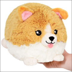 Mini Squishable Baby Corgi •