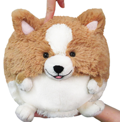 Mini Squishable Corgi •