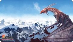 MTG Grand Prix Denver 2013 Playmat