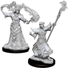 Pathfinder Battles Unpainted Minis - Male Human Sorcerer