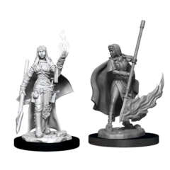 Pathfinder Battles Unpainted Minis - Female Human Oracle (Magic User)