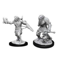 Nolzur's Marvelous Miniatures - Dragonborn Paladin (Male) Wave 11