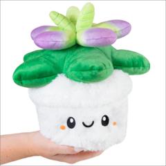 Mini Squishable Succulent