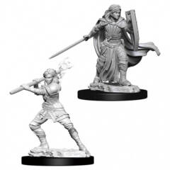 Dungeons & Dragons Nolzur`s Marvelous Unpainted Miniatures: Human Female Paladin
