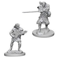 Dungeons & Dragons Nolzur`s Marvelous Unpainted Miniatures: Human Male Bard
