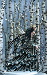 Aveliad the Forest 1000pc Puzzle