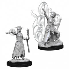 Dungeons & Dragons Nolzur`s Marvelous Unpainted Miniatures: Human Female Warlock