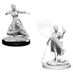 Dungeons & Dragons Nolzur`s Marvelous Unpainted Miniatures: Fire Genasi Female Wizard