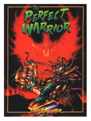 Street Fighter: The Perfect Warrior
