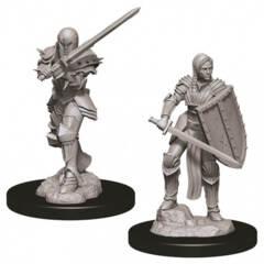 Dungeons & Dragons Nolzur`s Marvelous Unpainted Miniatures: W9 Female Human Fighter