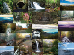 The Great Smoky Mountains 1000pc Puzzle