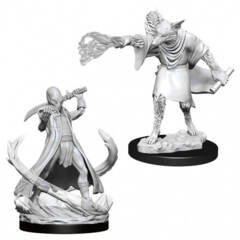 Dungeons & Dragons Nolzur`s Marvelous Unpainted Miniatures: Arcanaloth & Ultroloth