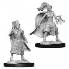 Dungeons & Dragons Nolzur`s Marvelous Unpainted Miniatures: Human Female Sorcerer