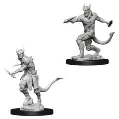 Dungeons & Dragons Nolzur`s Marvelous Unpainted Miniatures: Tiefling Male Rogue