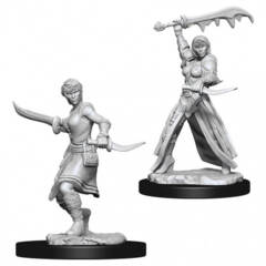 Dungeons & Dragons Nolzur`s Marvelous Unpainted Miniatures: Human Female Rogue