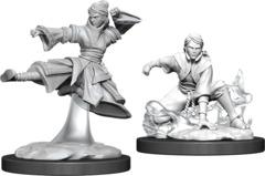 Dungeons & Dragons Nolzur`s Marvelous Unpainted Miniatures: Human Female Monk