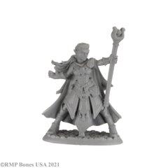 30008 - Alaedril Starbloom, Elf Wizard