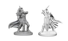 Female Knights / Gray Maidens