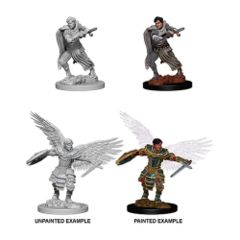 Nolzur`s Marvelous Unpainted Miniatures: Male Aasimar Fighter