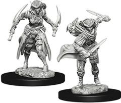 Nolzur's Marvelous Miniatures - Tiefling Female Rogue