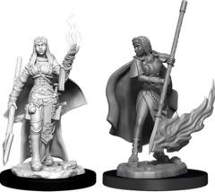 Pathfinder Deep Cuts Unpainted Miniatures  W11 Female Human Oracle (Magic User)