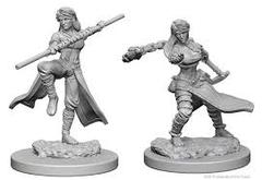 Nolzur's Marvelous Unpainted Miniatures - Human Monk