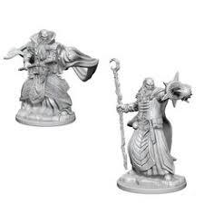 Nolzur's Marvelous Unpainted Miniatures - Human Wizard (Male)