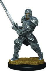Dungeons & Dragons Fantasy Miniatures: Icons of the Realms Premium Figures W3 Human Male Fighter
