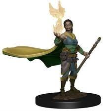 elf druid Premium miniature