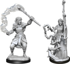 Dungeons & Dragons Nolzur`s Marvelous Unpainted Miniatures: W13 Firbolg Druid Female