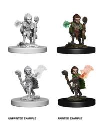 Gnome Male Druid